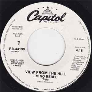 View From The Hill - I'm No Rebel